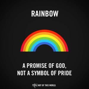 rainbow_notw