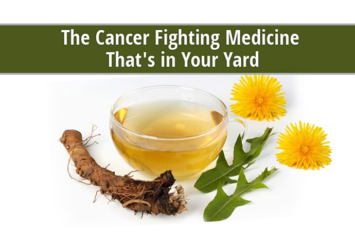 dandelion cures cancer